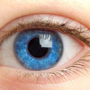 Blinde Flecken bei der Suchmaschineoptimierung